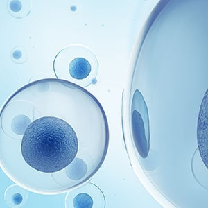 Contact Us for Areas of Treatment with Stem Cells.